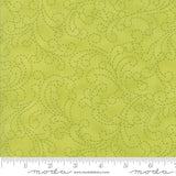 Sunday Drive Clover Stitch Fabric 43074 16