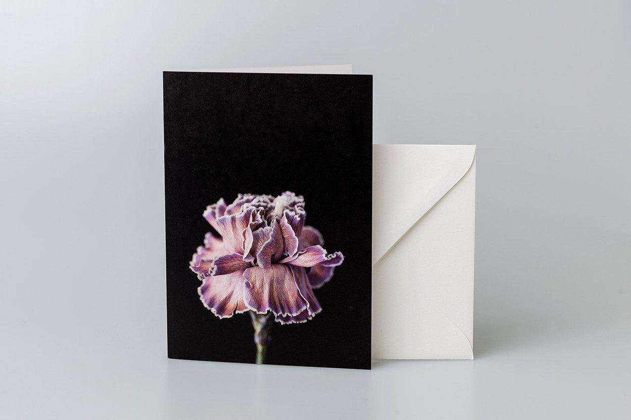 Double Carnation Greeting Card