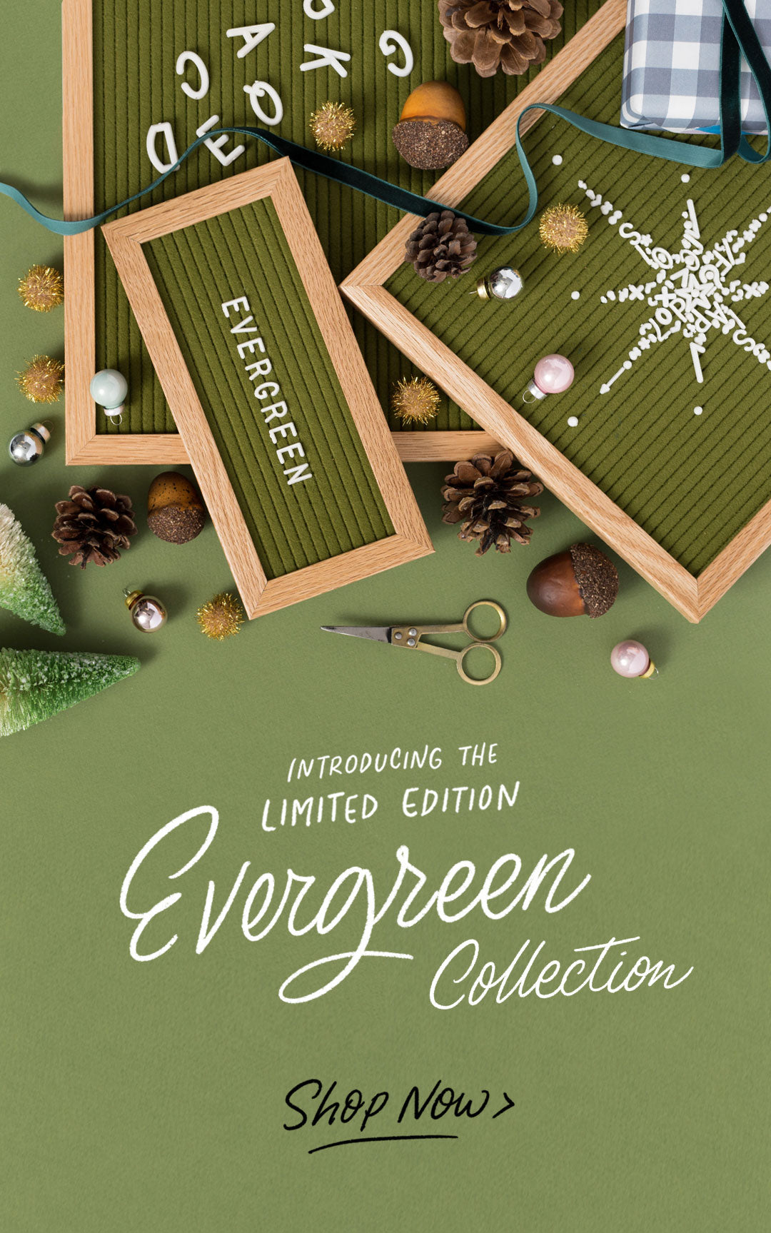 Shop Letterfolk Evergreen Collection