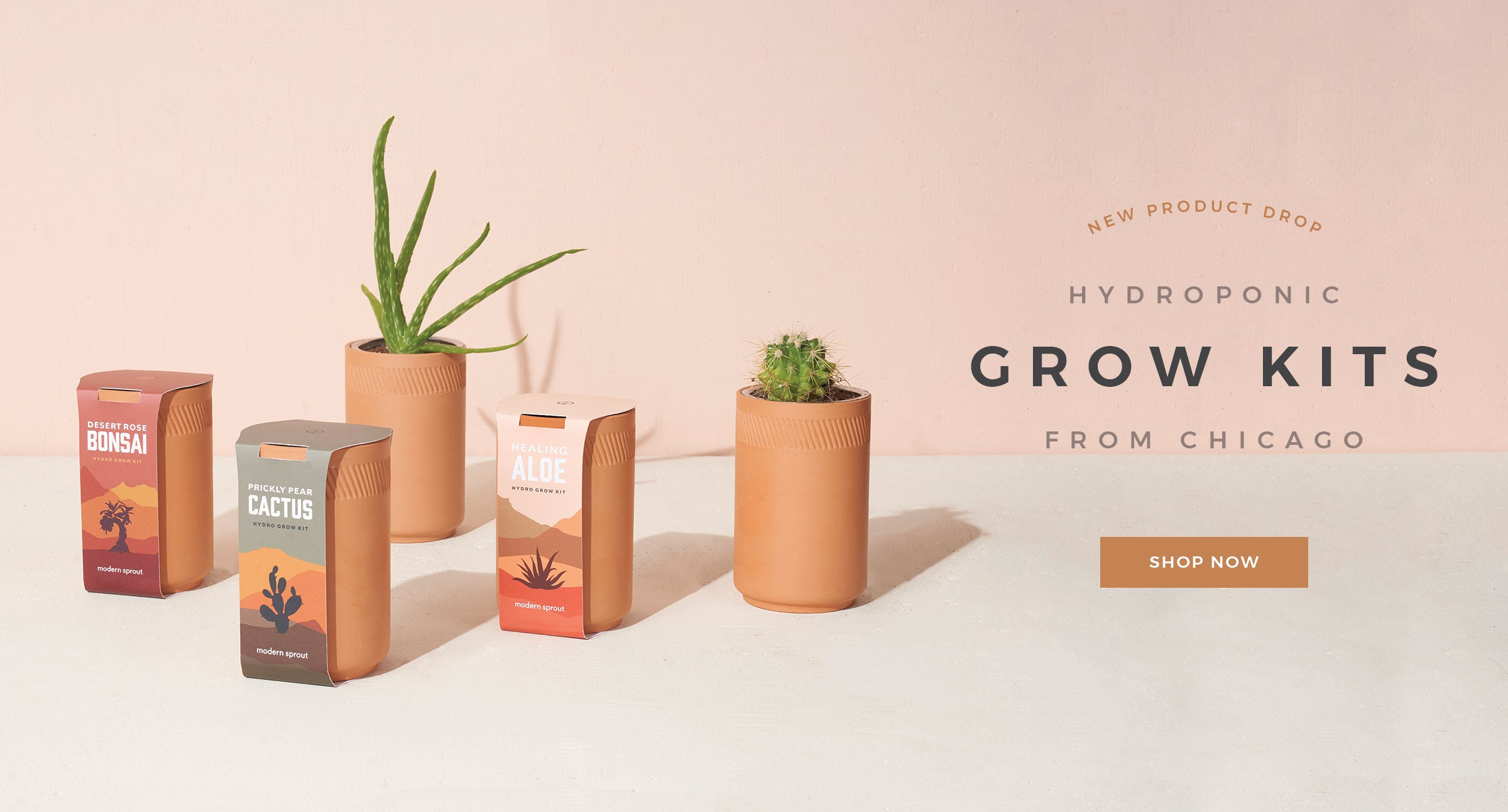 Grow Kits by Letterfolk