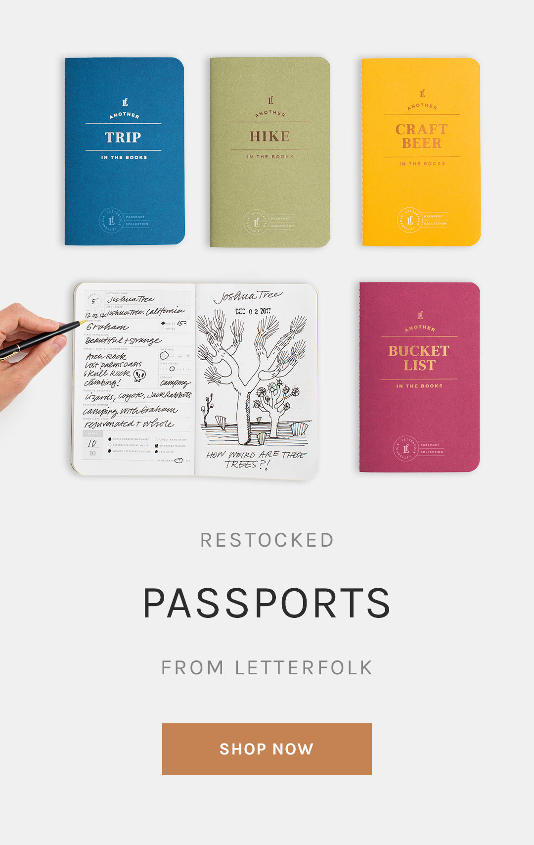 Passport Collection from Letterfolk