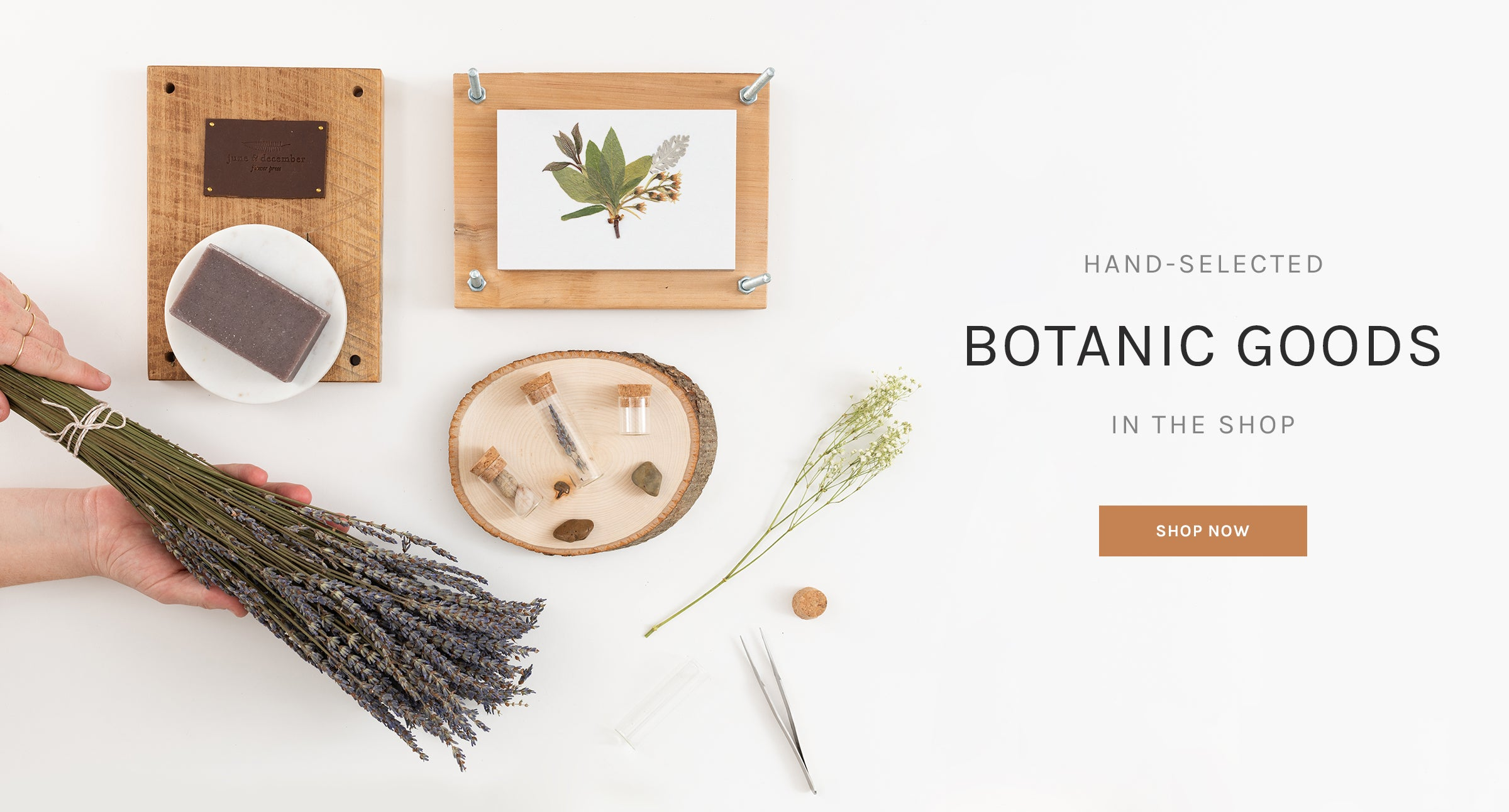 Hand-Selected Botanic Goods in the Shop