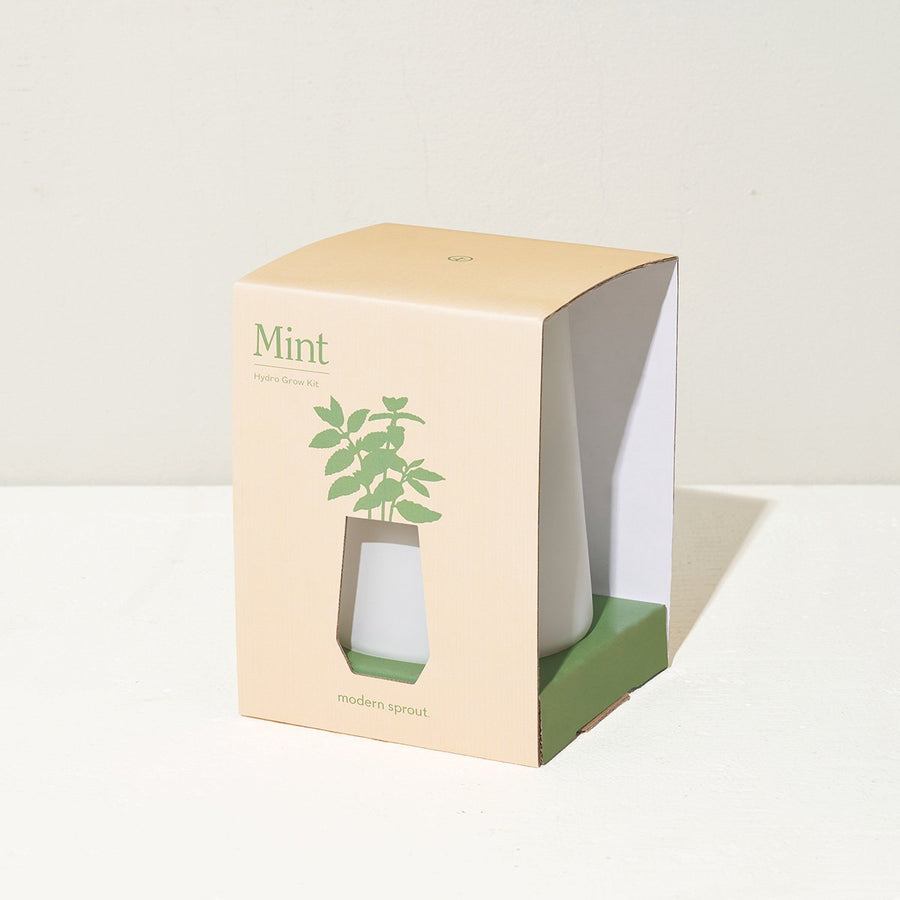 Herb Grow Kit - Letterfolk