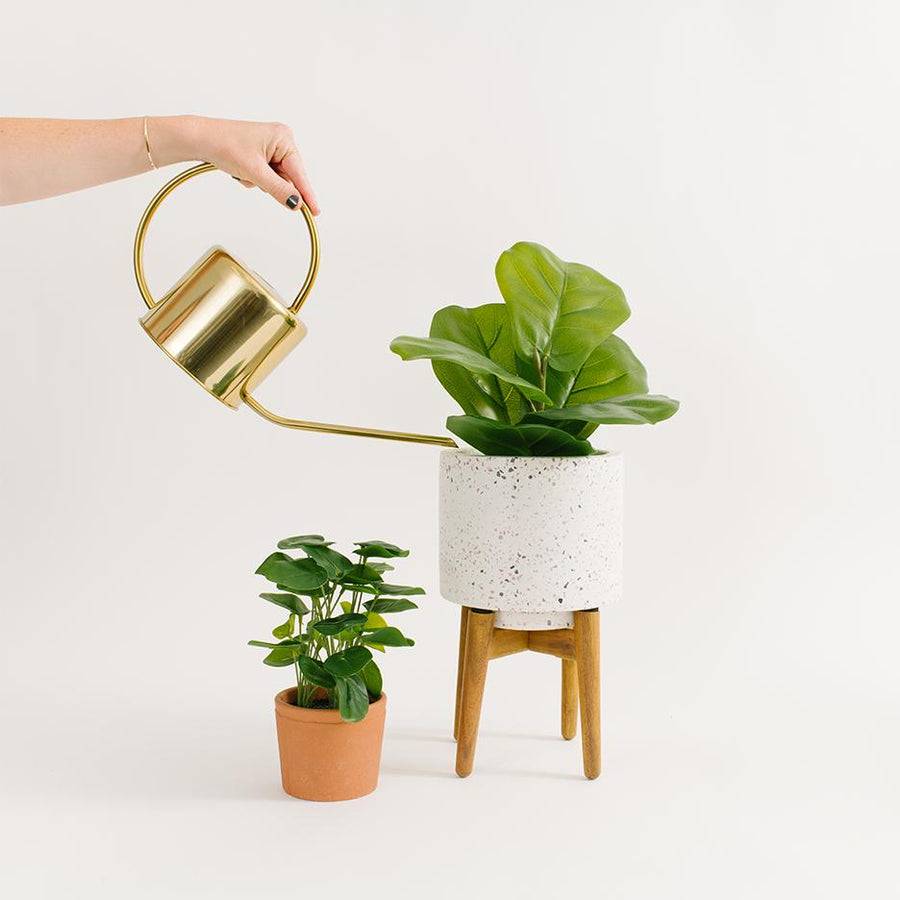 Gold Watering Can - Letterfolk