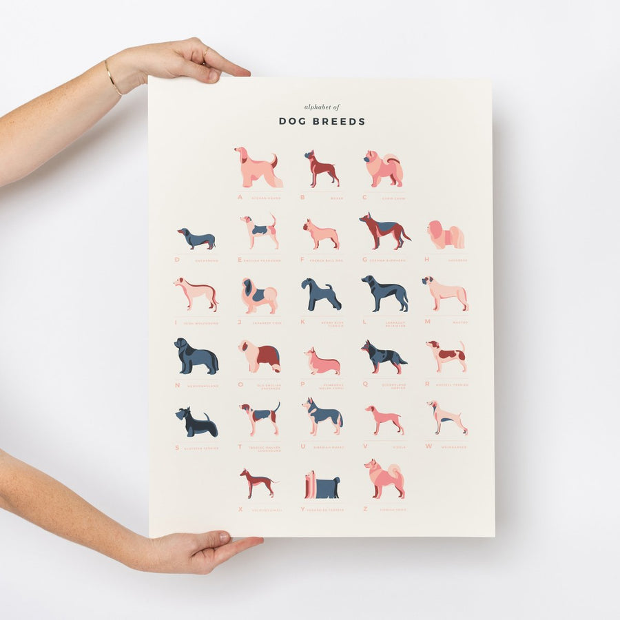 Dog Breeds Alphabet Print - Letterfolk