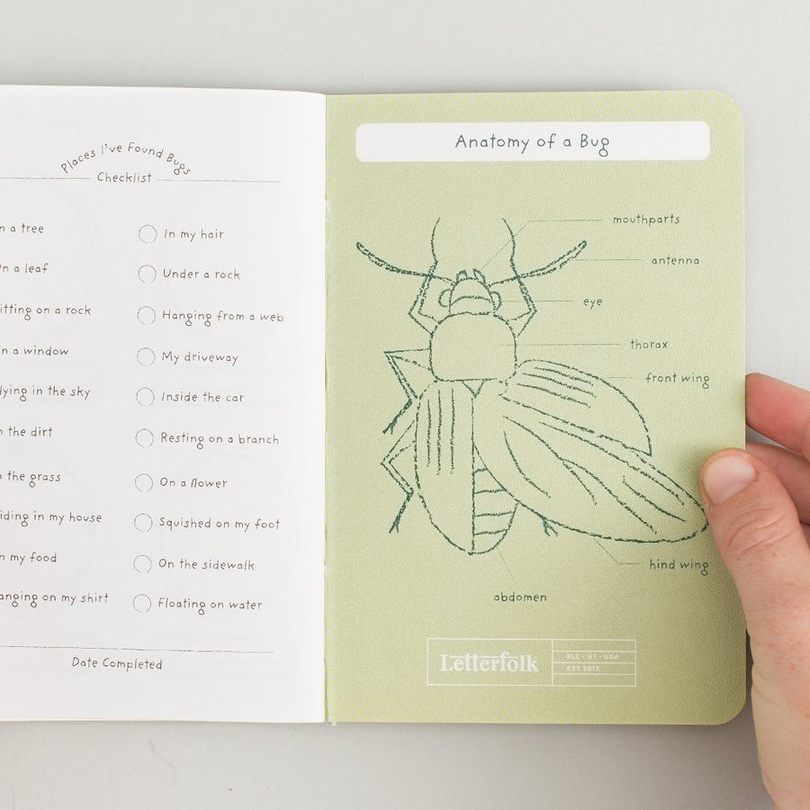 Kids Bug Passport Letterfolk