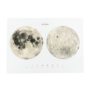 Terrain Map of the Moon - Letterfolk