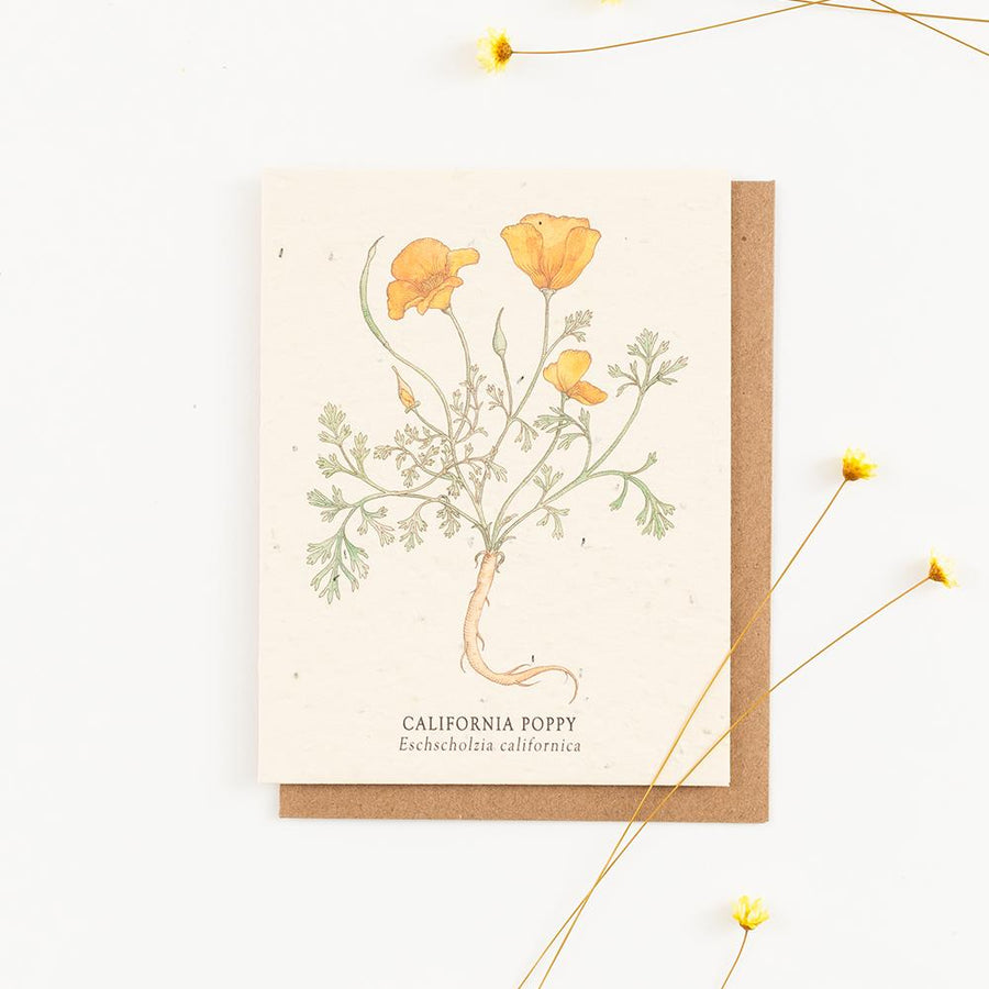 Plantable Wildflower Greeting Cards - Letterfolk