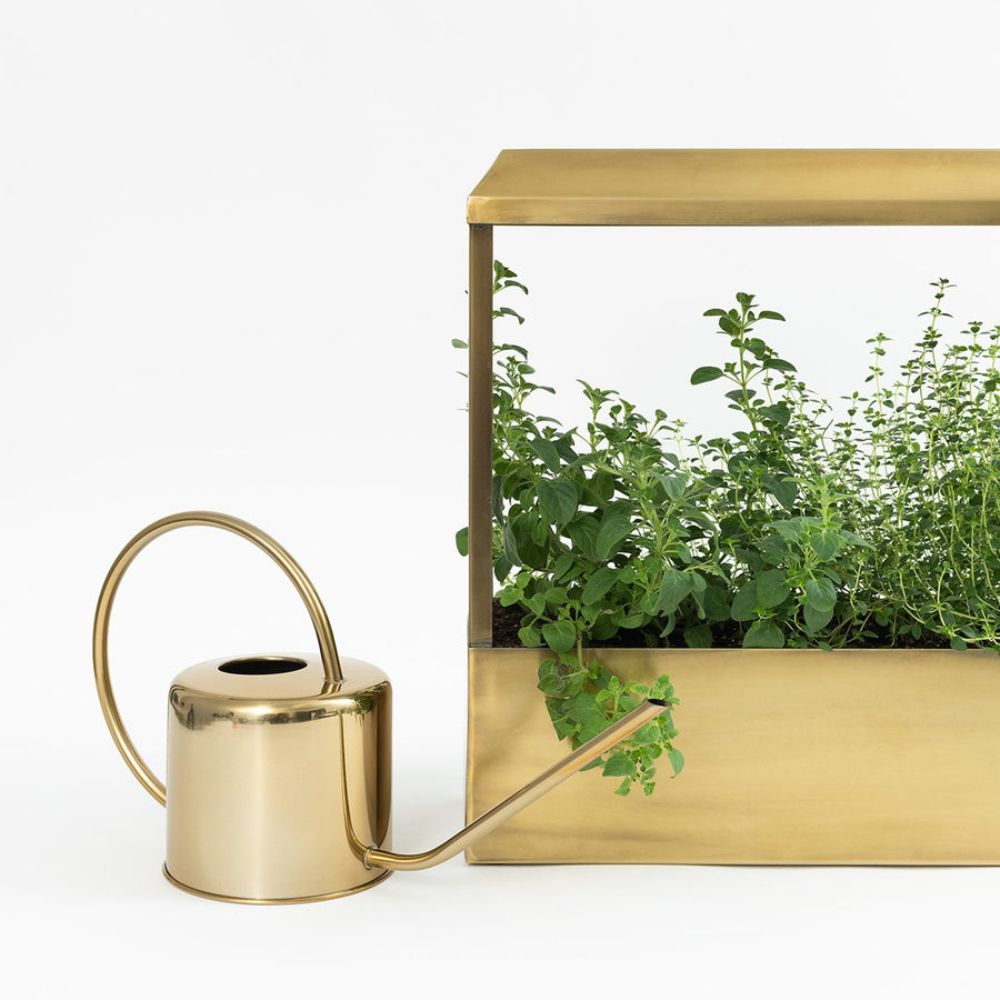 Smart Brass Growhouse - Letterfolk