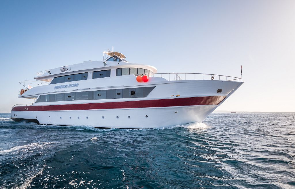 Red Sea 2020 Wrecks & Reefs June 26- July 6, 2020 - Outside The Asylum Diving & Travel