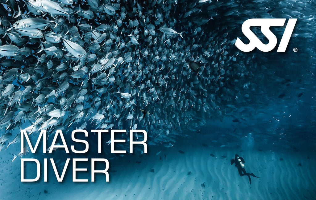 SSI Master Scuba Diver Bundle - Outside The Asylum Diving & Travel