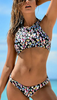 Women Cute Parrot Printing Bikini Sets