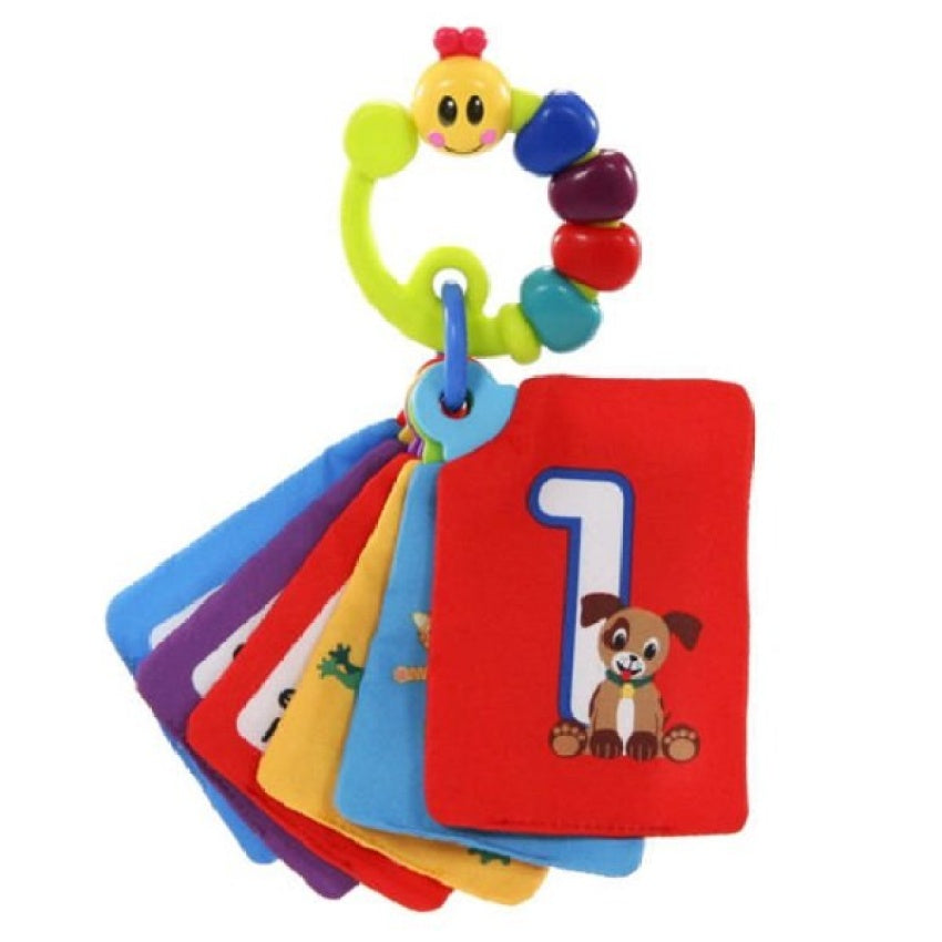 Baby Einstein Take Along Discovery Card - Toys