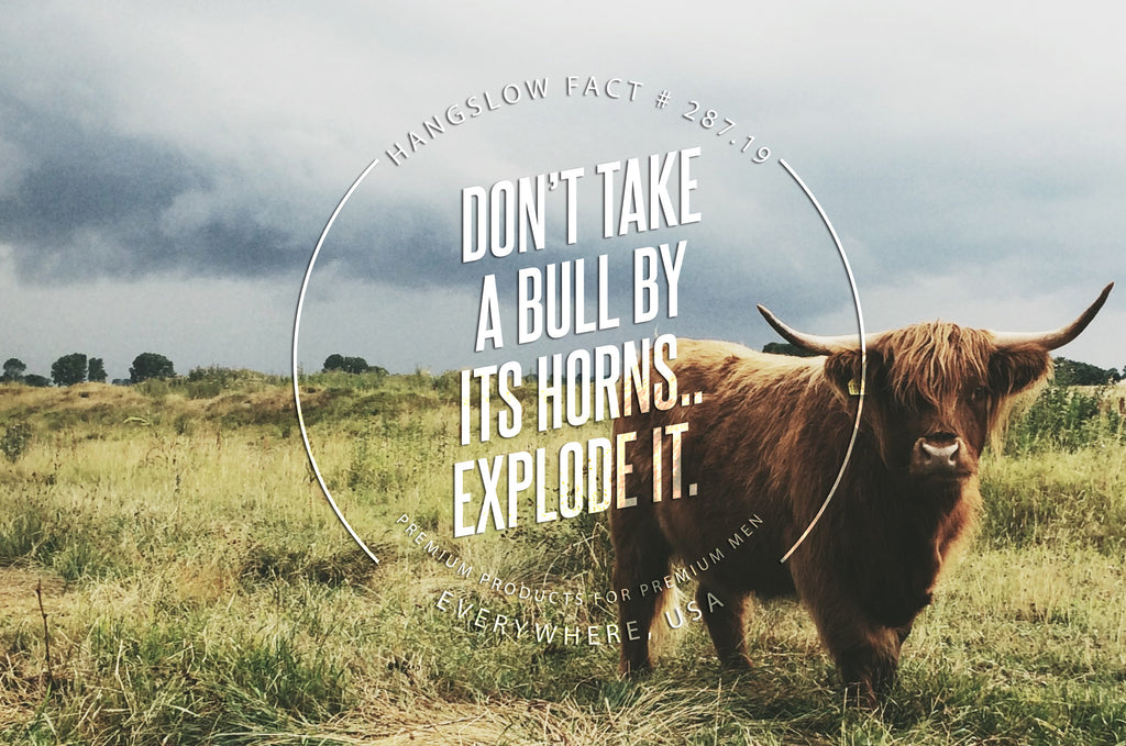 Don't take a bull by the horns. Explode it.