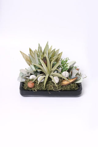Evergreen Succulents Table Decor