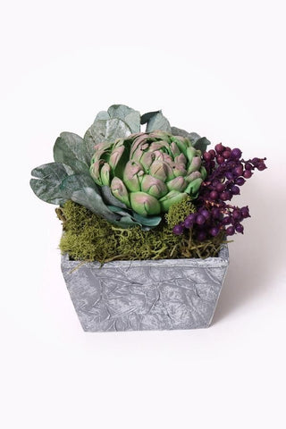 Clean green Succulents Pot Decor