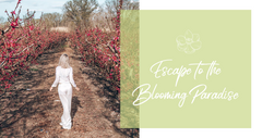 Escape to the Blooming Paradise