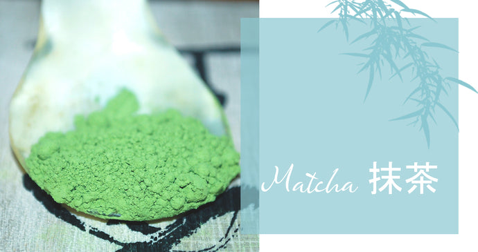 Matcha 抹茶 - the Ancient Drink of a New Century