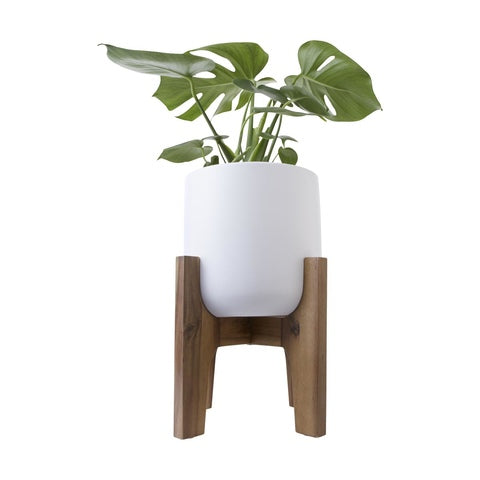 Pot with Acacia Stand