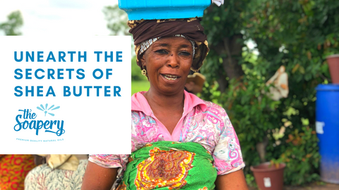 Unearth The Secrets of Shea Butter
