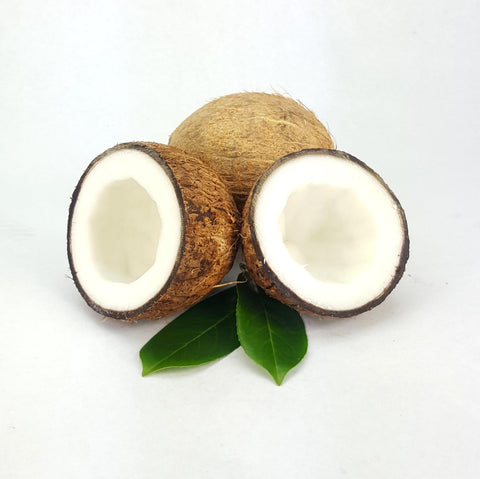 Coconut oil bulk wholesale for soap making and cosmetics