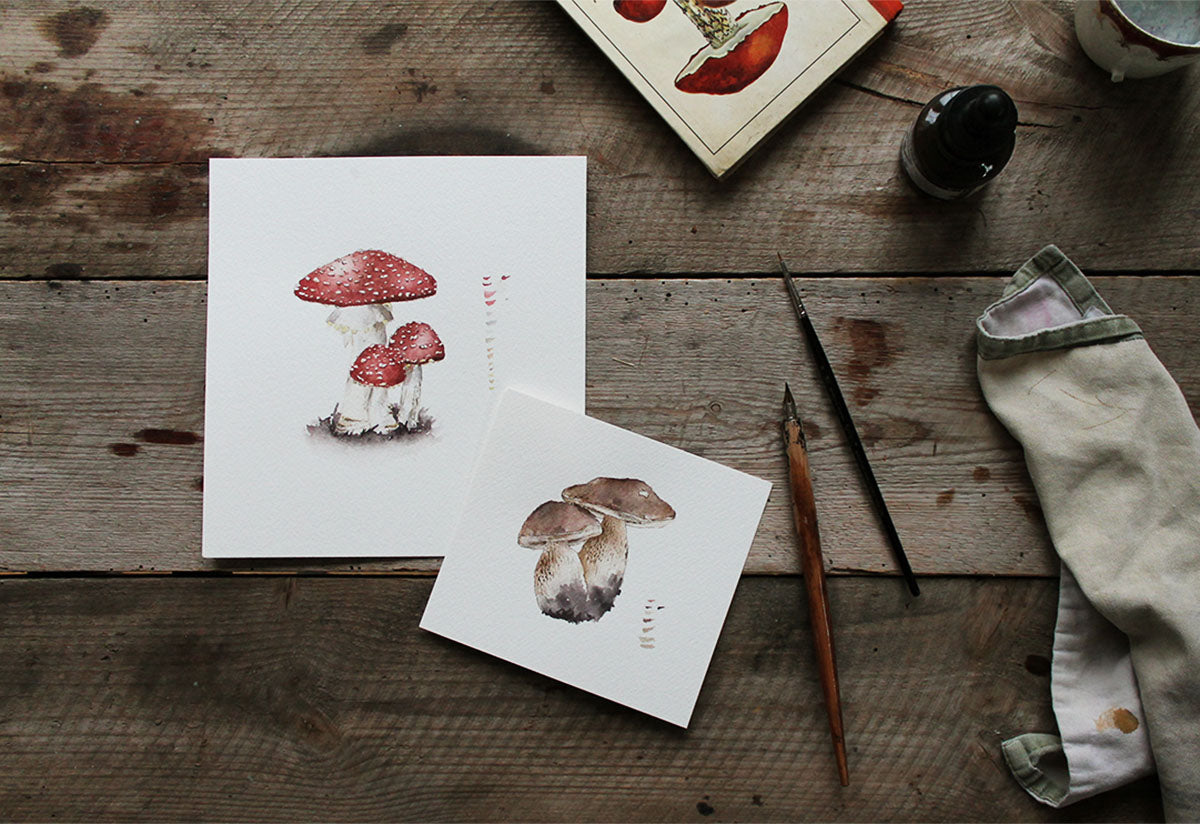 Fly agaric and Porcini mushroom illustrations on wooden table with ink pen, brush, mushroom ID book and a cloth