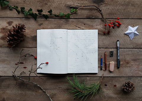 Rustic table with winter nature finds and nature journal flat lay