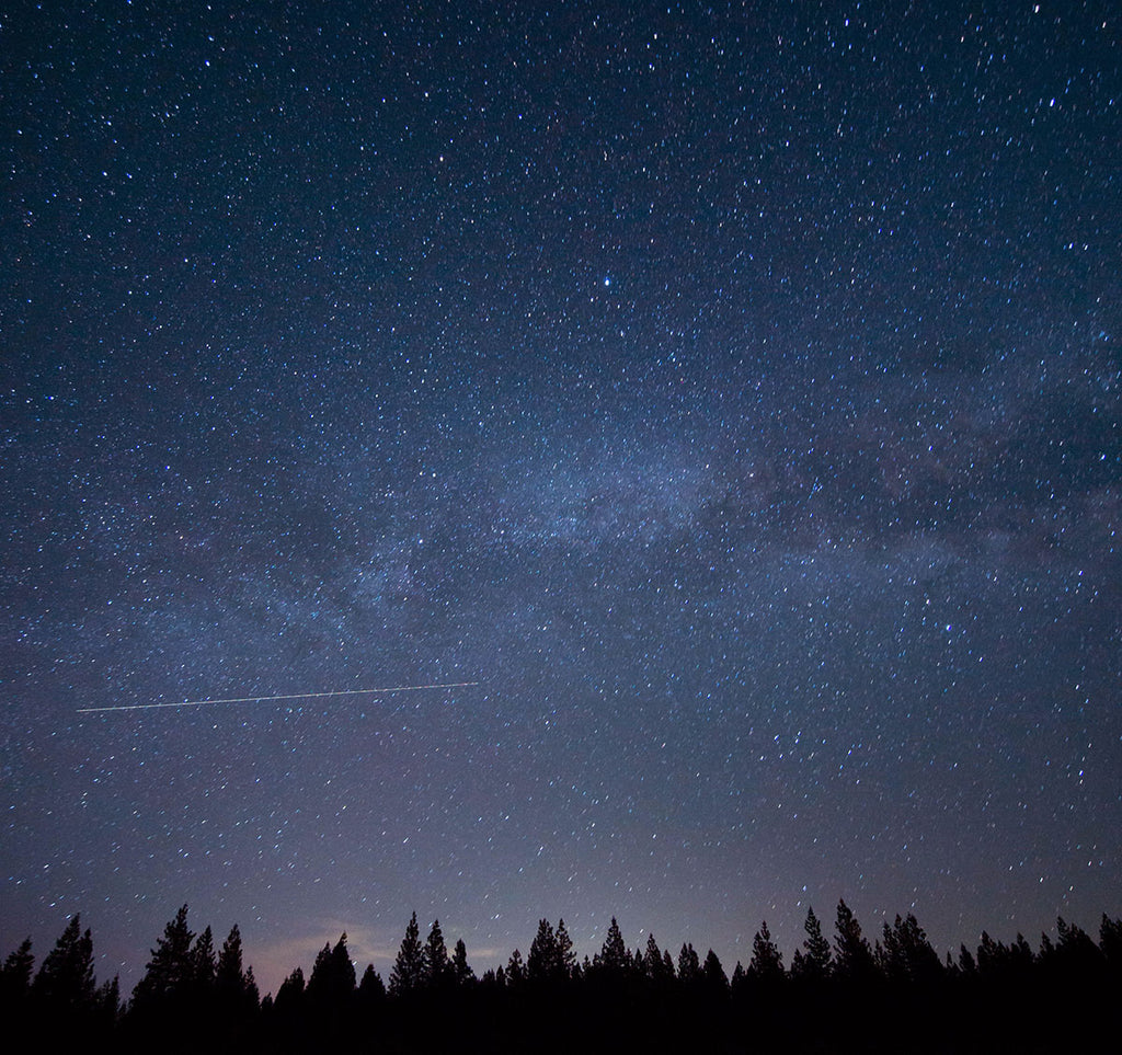 Night sky with trees silhouetted. Credit: Wil Stewart, Unsplash