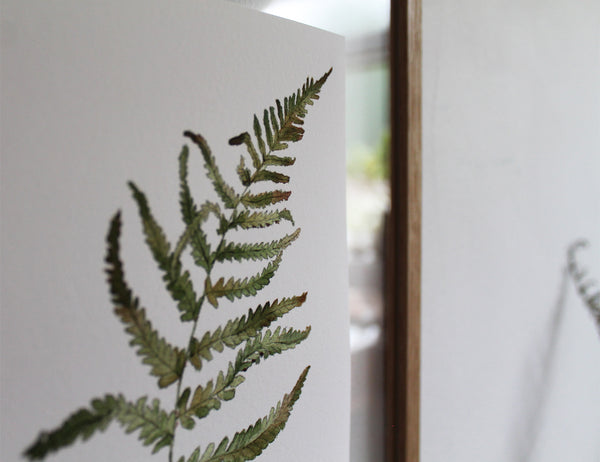 Large Limited Edition Woodland Fern Print