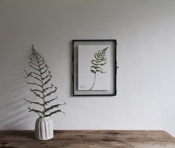 Small Limited Edition Woodland Fern Print