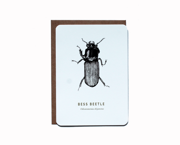 Bess beetle greetings card