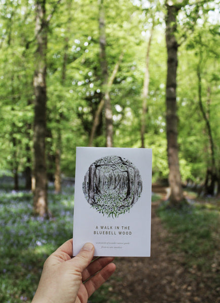 Bluebell nature guide - available until 31 May