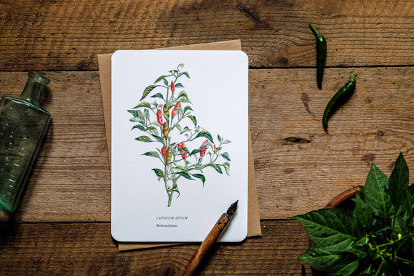 Chilli medicinal plant greetings card