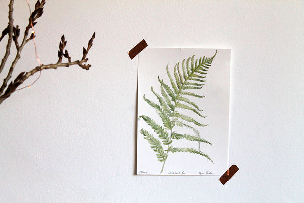 Watercolour fern original artwork