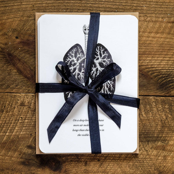 Anatomy greetings card collection gift set