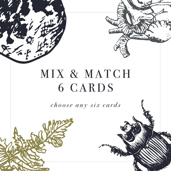 Mix and match 6 cards