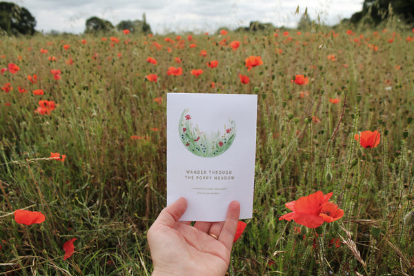 Poppy nature guide held in front of a poppy meadow