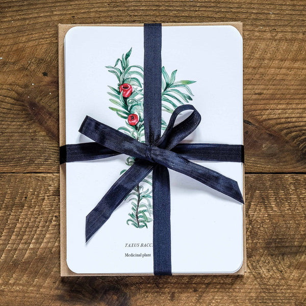 Botany greetings card collection gift set