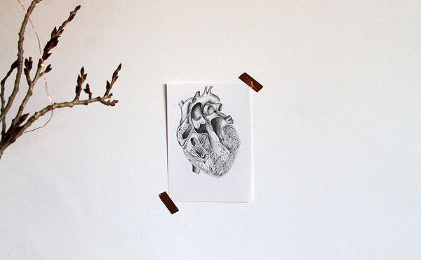 Anatomical heart original artwork