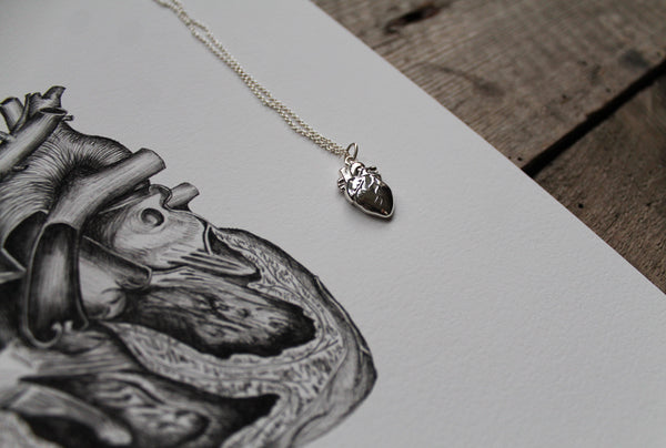 Anatomical Heart Print and Sterling Silver Pendant