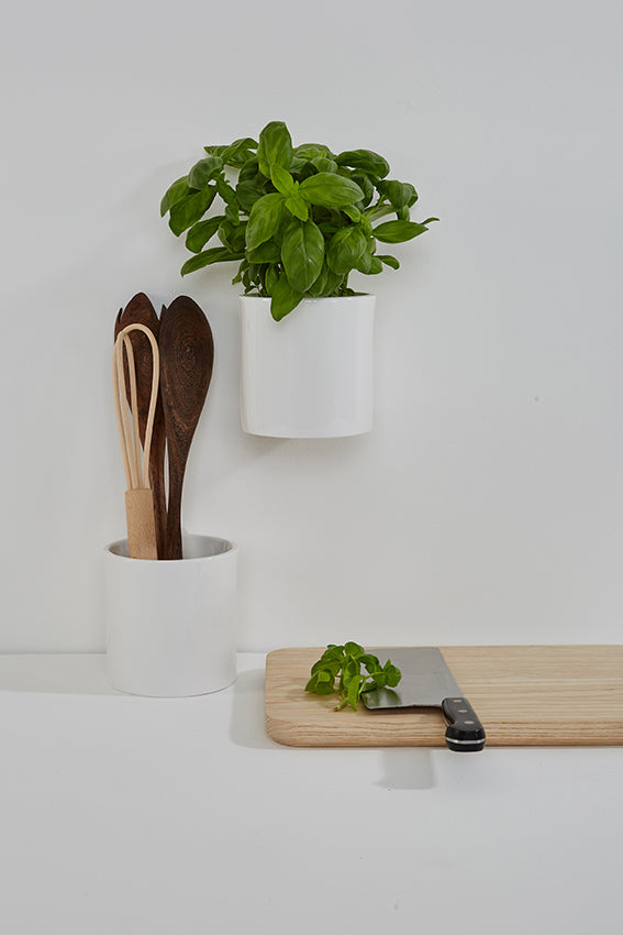 Planters, ceramic, white, round, kitchen, potted basil plant