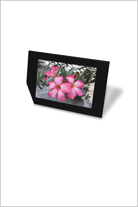 Black photo frame, leaning, pink flowers