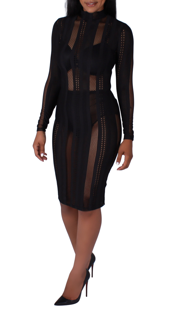 Alicia Mesh Well Bodycon Dress