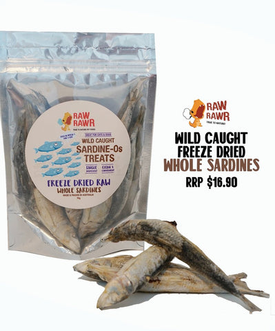 Raw Rawr Freeze Dried Treat - Whole Sardine