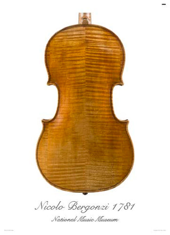 Photo of viola back by Nicola Bergonzi, 1781