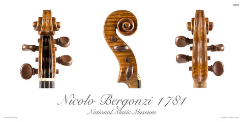 Photos of viola scroll by Nicola Bergonzi, 1781