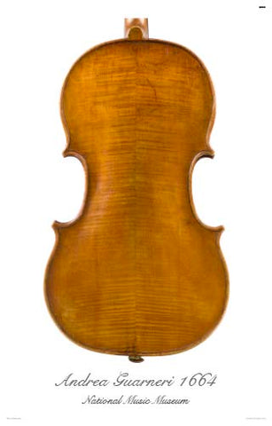 Photo of back of Andrea Guarneri tenor viola, 1664