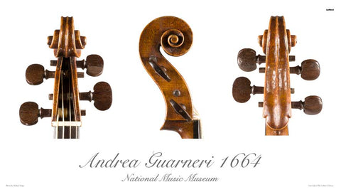Photo of Andrea Guarneri tenor viola scroll, 1664
