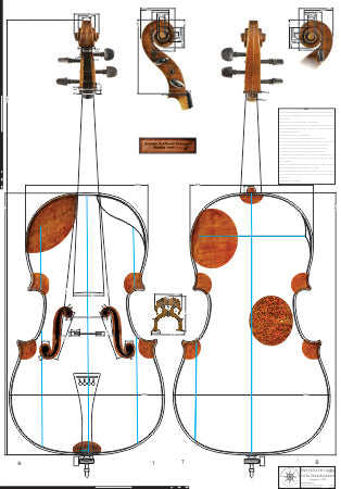 Technical drawing, Cello, 'The Fruh,' by Stradivari