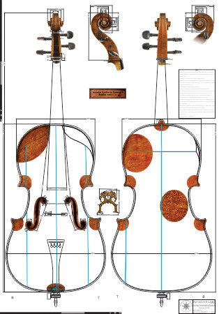 Technical Drawing: Violoncello/Viol (